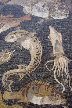 Marine Life Mosaic from House VIII Pompeii demonstrating the vermiculatum technique Roman century BCE Ancient Rome, Ancient Greece, Ancient Art, Ancient History, Roman History, Art History, Pompeii And Herculaneum, Décor Antique, Roman Art