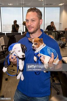 Tom Hardy, Joanna Lumley, Lindsay Lohan and Pippa Middleton turn stockbrokers for charity day Tom Hardy Dog, Battersea Dogs, Davina Mccall, Global Charity, Old Hollywood Stars, Classic Hollywood, Thing 1, Tom S, Pippa Middleton