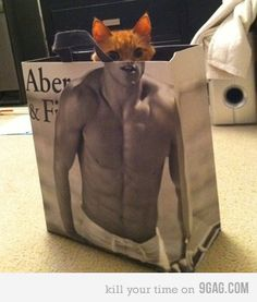 So they won't let uncool, fat people wear their clothes but they don't mind catface man modeling on their bag?
