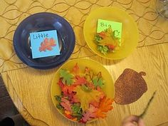 Great sorting practice for higher level thinking. Also try sorting leaves in a different way, such as by colors or shape