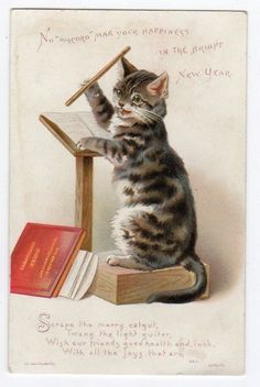 New Year Greetings Card Cat Conducting on Rostrum. Helena Maguire.