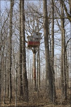 treehuts: physilosophography: For Julia , a tree house I photographed in Ontario years ago. Her post here just reminded me of it.wow what a knee knocker ps.