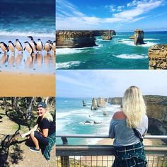 "The past two days has been completely amazing! A highlight! Traveling the ""Great Ocean Road"" was an incredible experience. From seeing the beautiful turkish/blue sea the twelve apostles all the beautiful animals; including feeding wallabees/kangaroos - to be seeing the Penguin parade; all the small beautiful penguins comes back to the beach at night to feed their babies oh boy that was such an incredible sight something I will never forget! Now goodbye to Melbourne and hello to Sydney were…"