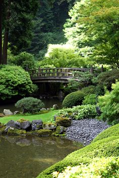 Japanese Gardens are my very most favorite. There is complete peace in the beauty of them.