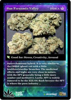 San Fernando Valley | Repined By 5280mosli.com | Organic Cannabis College | Top Shelf Marijuana | High Quality Shatter