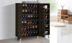 Shirley 2-Door Wood Shoe Cabinet with Open Shelves, plus that bench in the background