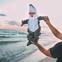 Самая милая акула в мире