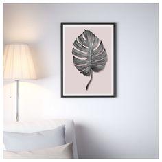 Die Monstera unter den Pflanzen  Als Kind hab ich diese Pflanze gehasst, sie hat das Wohnzimmer meiner Eltern geschmückt. Vor ein paar Jahren, war ich als Gast in einem Schloss auf Palermo untergebracht, hier wuchs diese Pflanze bis zu 10 Meter hoch und ein Blatt hatte die Größe eines Autoreifens. Sehr beeindruckend!!