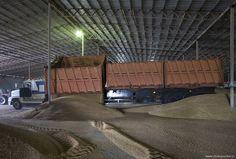 Белгородская область. Хранение и обработка зерна.: chistoprudov