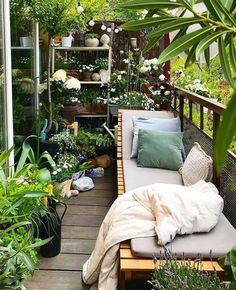 Une mini jungle sur un balcon. - Balcony Garden Ideas , Une mini jungle sur un balcon. Une mini jungle sur un balcon. Small Balcony Design, Small Balcony Garden, Small Balcony Decor, Balcony Plants, Small Patio, Balcony Gardening, Balcony Flowers, Small Balconies, Patio Plants