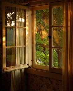 i can just imagine looking out this window and how it would smell