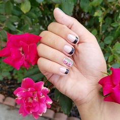 Super cute #manimonday look from @wraps_in_motion! What wraps have you used to make #frenchtips? #VerticalGardenJN #MatteBlackJN #Jamberry