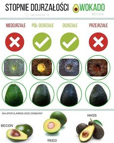 W produktu - Awokado Becon Avocado Varieties, Avocado Rose, Dieet Plan, Avocado Benefits, Healthy Smoothies, Guacamole, Food And Drink, Fruit, Cooking