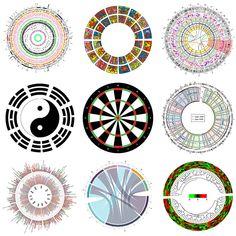 Circular Viz in R