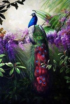 Canvas-Print-Animals-Peacock-Oil-painting