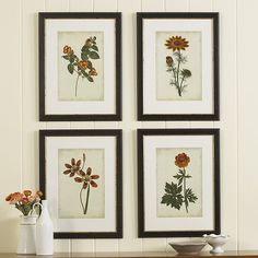 Ballard Designs Set of Four Vibrant Botanical Giclee Prints ($499) ❤ liked on Polyvore featuring home, home decor, wall art, giclee wall art, floral home decor, ballard designs, european home decor and framed floral wall art