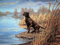 chocolate lab hunting dogs art | Sporting Art Oil Painting ]