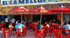Restaurant El Camello Jr, Tulum Best and Freshest Seasfood