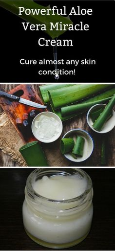 Aloe vera can be applied topically for the healing of burns, wounds and other skin conditions. Today we are going to share with you a step-by-step tutorial on how to make an all-purpose Aloe Vera skin cream