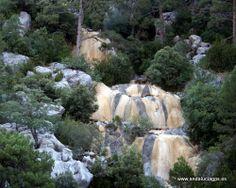"""#Jaén - #Quesada - Arroyo Amarillo - 37º 52' 35"""" -2º 57' 27"""" / 37.876389, -2.957500  Foto de Arturo Gámez (@Arturo Gámez Gámez). Encontraremos estos bellos paisajes muy cerca del Nacimiento del Río Guadalquivir (a 1.400 mts de altitud)."""
