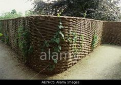 Curved continuous willow fencing