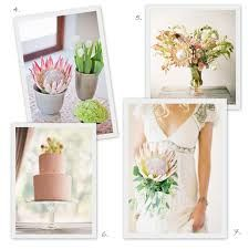 protea bouquet - Google Search