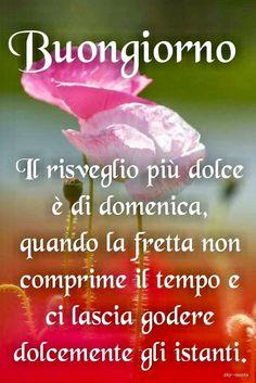 Italian Memes, Italian Quotes, Italian Greetings, Short Messages, Good Morning Quotes, Verses, Positivity, Genere, Anna