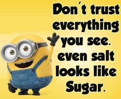I hope you are finding minions funny quotes really cool and hilarious, because I am really enjoying them and now because they are all over the internet . A minion quote. Funny Minion Pictures, Funny Minion Memes, Minions Quotes, Minions Images, Funny Humor, Just For Laughs, Just For You, Minions Love, Minions Minions