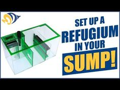 How to build a refugium step by step DIY - YouTube