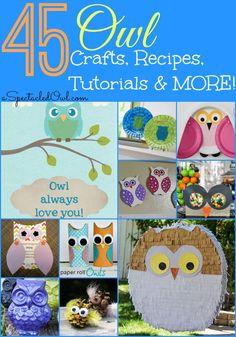 45 Amazing Owl Crafts, Recipes, Tutorials and MORE