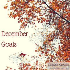 Setting goals for December 2015 - post includes a linky so you can add yours for added accountability!