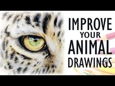 Tips for Drawing REALISTIC ANIMALS | Get Better with Colored Pencil - YouTube
