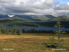 National Park Lierne Norway