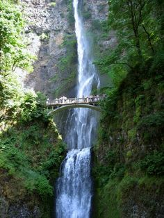 Multnomah Falls, Oregon I'm scared shitless  of heights but this is beautiful... I really would like to visit Oregon someday