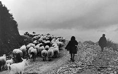 mana Manado, Costa, Photo Credit, Cool Photos, Greece, Dolores Park, Black And White, Photographers, Memories