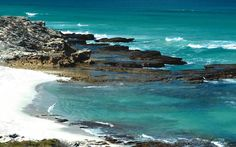 Beach Rare Species, Whale Watching, Nature Reserve, World Heritage Sites, South Africa, Creatures, Adventure, Park, Hoop