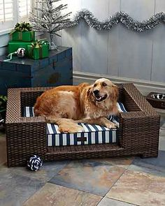 Tommy Bahama - Resin Wicker Bed