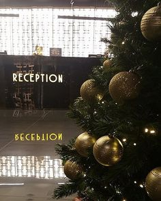 Enjoy your first day of the year and visit us and enjoy amazing gifts & surprises! Entry to the Casino is permitted to those who are or over and carry with them a valid ID or passport. Amazing Gifts, Days Of The Year, Hotel Spa, Passport, Best Gifts, Reception, Christmas Tree, Entertaining, Holiday Decor