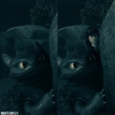Hiccup&Toothless