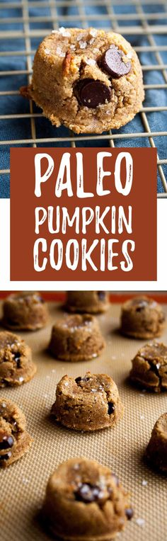 These paleo pumpkin cookies are perfect for fall and allergy friendly! They are made with almond and coconut flour, pumpkin spice, and dark chocolate chips! Paleo Pumpkin Cookies, Pumpkin Recipes, Fall Recipes, Coconut Cookies, Protein Cookies, Healthy Cookies, Sweet Recipes, Paleo Sweets, Paleo Dessert