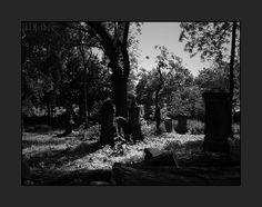 Pirmasens, alter Friedhof