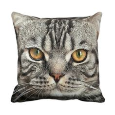 >>>Coupon Code          Kitty Face Closeup Pillow           Kitty Face Closeup Pillow today price drop and special promotion. Get The best buyShopping          Kitty Face Closeup Pillow today easy to Shops & Purchase Online - transferred directly secure and trusted checkout...Cleck Hot Deals >>> http://www.zazzle.com/kitty_face_closeup_pillow-189544786346153718?rf=238627982471231924&zbar=1&tc=terrest