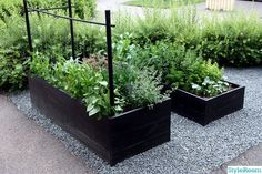 Garden boxes in gravel. Garden boxes in gravel. Garden Inspiration, Plants, Garden Boxes, Vegetable Garden Design, Diy Garden, Outdoor Gardens, Urban Garden, Garden Landscaping, Garden
