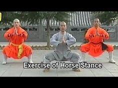 (FIRE BENDING) Northern Shaolin video for basic movements.   Shaolin Kong fu 18…