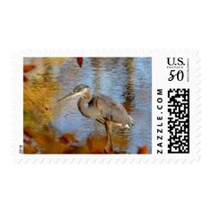 Great Blue Heron framed with fall foliage Postage - animal gift ideas animals and pets diy customize