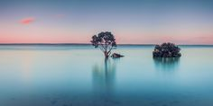 Long exposure Mangroves @ Tenby Point Australia [OC][1080540] by swiftersonby