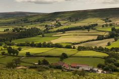 ***Countryside near Staithes (Yorkshire, England) by Greg Woolliscroft