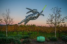 Blog Best Wineries to Visit in Napa, California — Hall winery - We love wine which makes it hard to decide where to go in Napa! See our favorite places to go and wineries to visit in Napa, CA. Best wineries Napa | Wineries in Napa, CA | Best wine in Napa, CA #wine #napa #hall #bunny #lightsaber