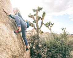 bearcamblog: The Bouldering World Cup season is about to...