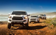 webcam - The World`s Most Visited Video Chat Toyota Tacoma Trd Pro, Toyota Tundra, Toyota Cars, Toyota Vehicles, Tacoma Truck, Most Visited, Trucks, Nice, Cars 2017